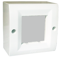 2 Module Surface Box with Back Plate